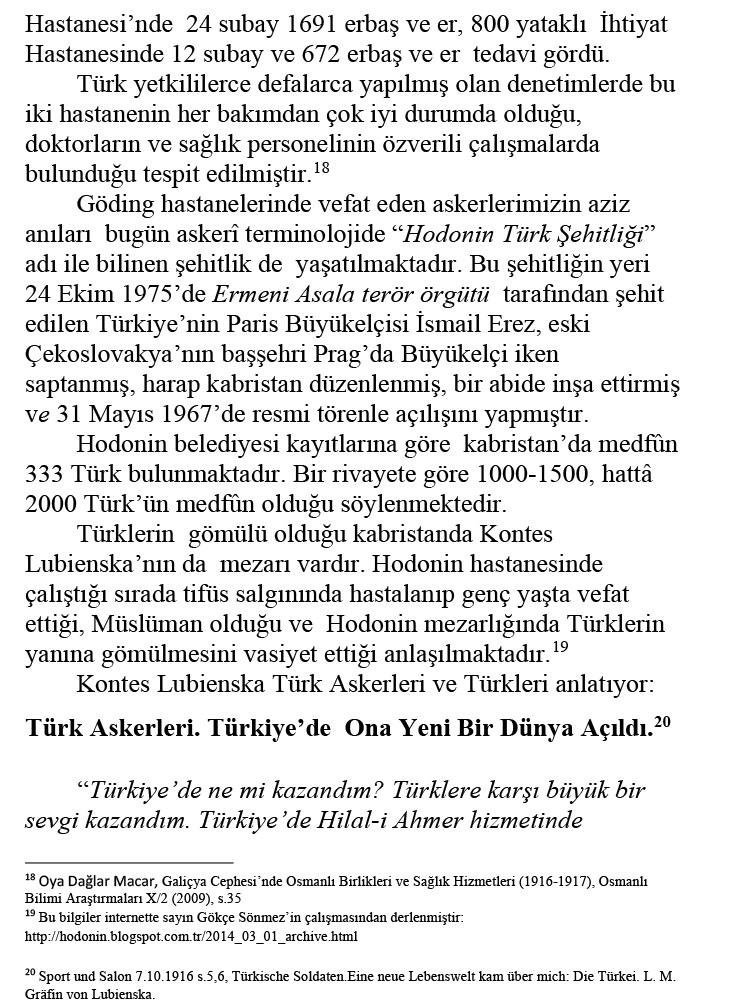 Kontes-Lubienska-Bir-Melekti