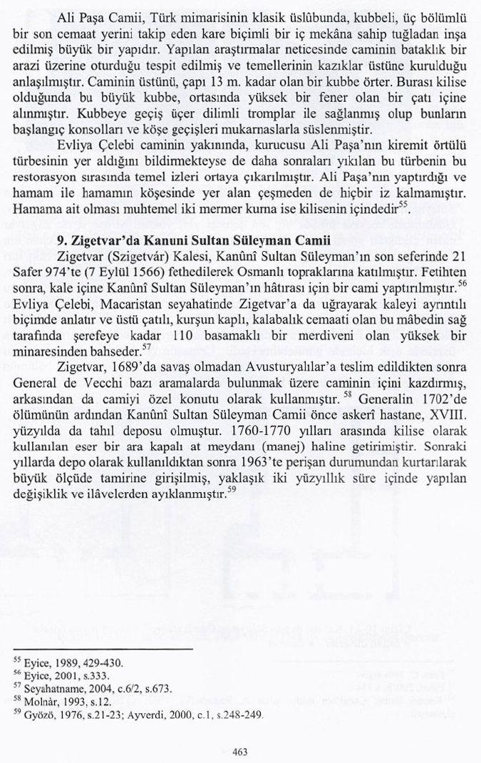 Macaristan Mehmet_Emin_22